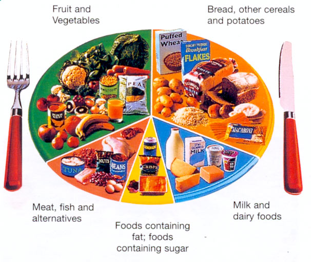 essay about healthy food habits