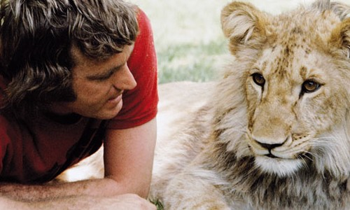 Image result for lion human friendship""